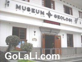 Museum Geologi, Mengungkap Sejarah Kehidupan di Bumi